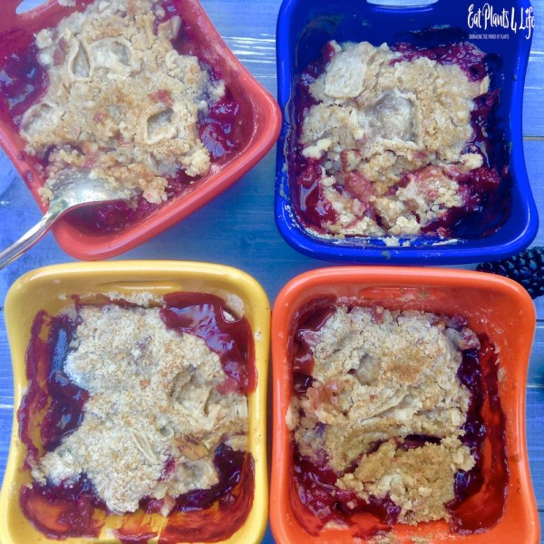 berry apple crisp 13