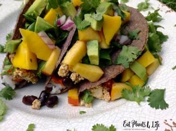 Quick Vegan Dinner Ideas 9