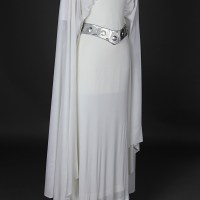 See Princess Leia's 1977 Ceremonial Gown At Star Wars Celebration Event