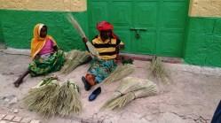 Vendedoras de junco, Harar. Foto: eaTropía