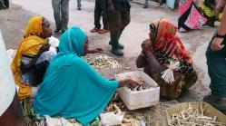 Vendedoras de palitos para limpiarse los dientes, Harar. Foto: eaTropía