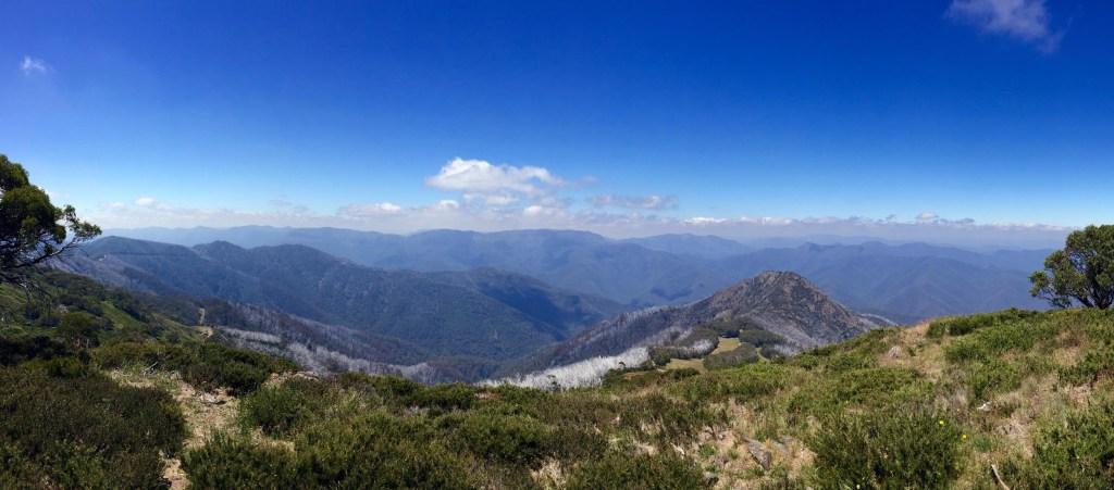 Mt. Buller: Wir waren auf dem Summit Nature Walk unterwegs.