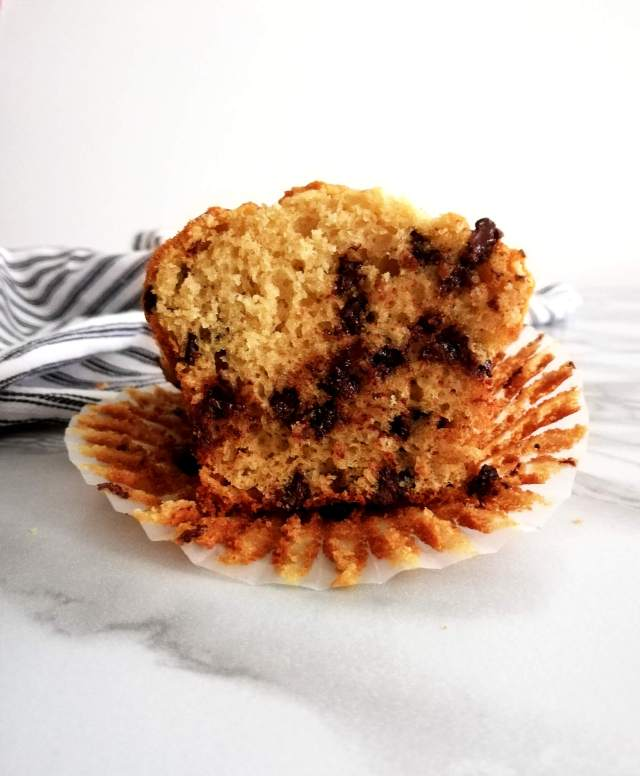 chocolate chip muffins inside texture head on view