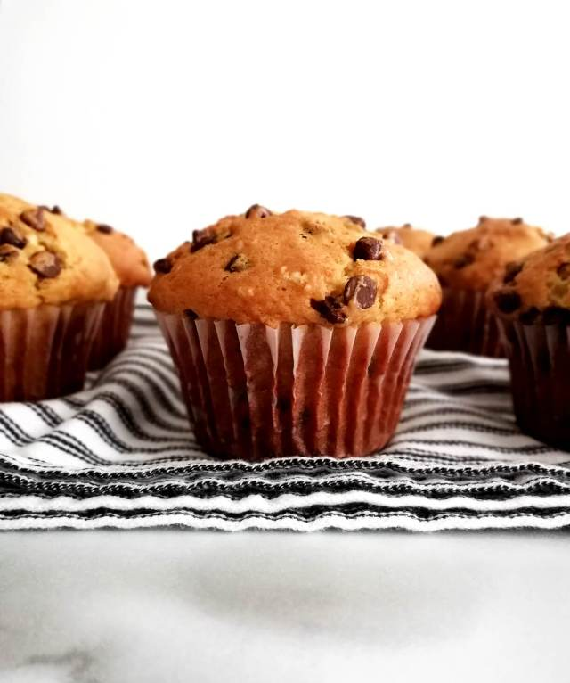 chocolate chip muffins lined up on tea towel head on view