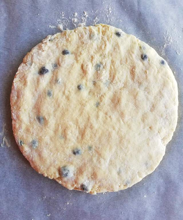 blueberry scones shaped dough