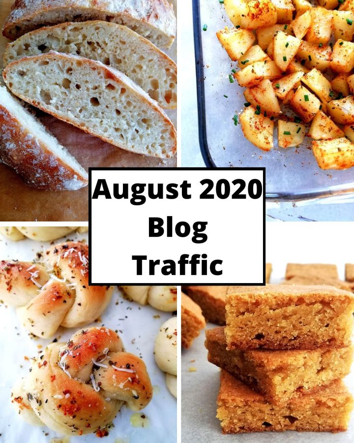 august 2020 blog traffic