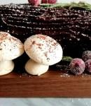 meringue mushrooms on buche de noel (1)