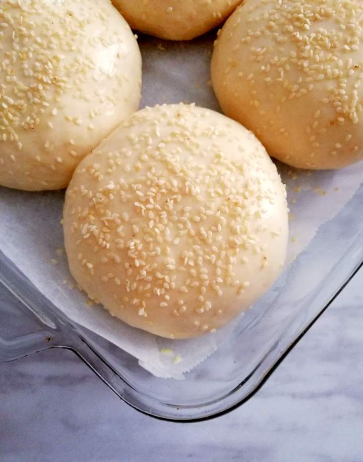 hamburger buns shaped and topped with sesame seeds close up side view