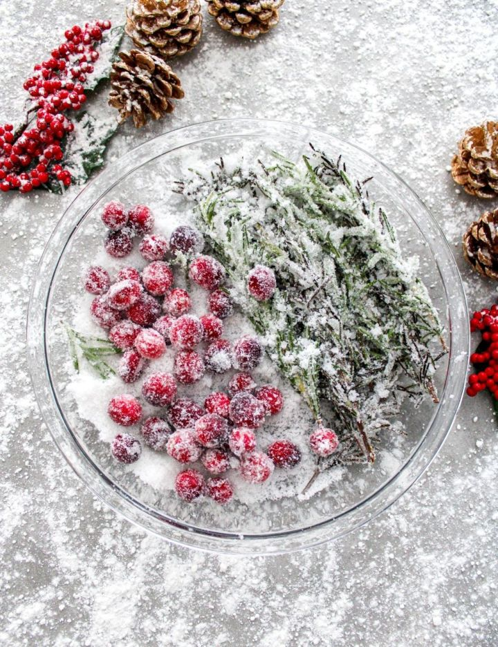 sugared cranberries and rosemary in plate overhead image
