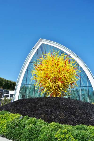 Chihuly Garden and Glass Things You Must See in Seattle