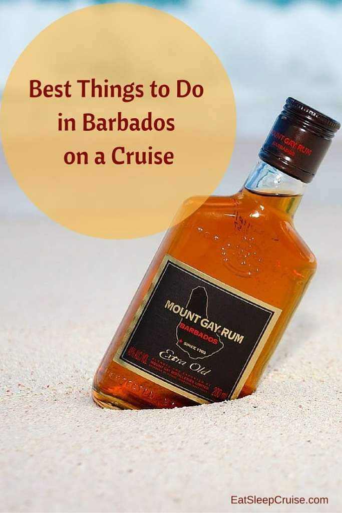 Best Things to Do in Barbados on a Cruise