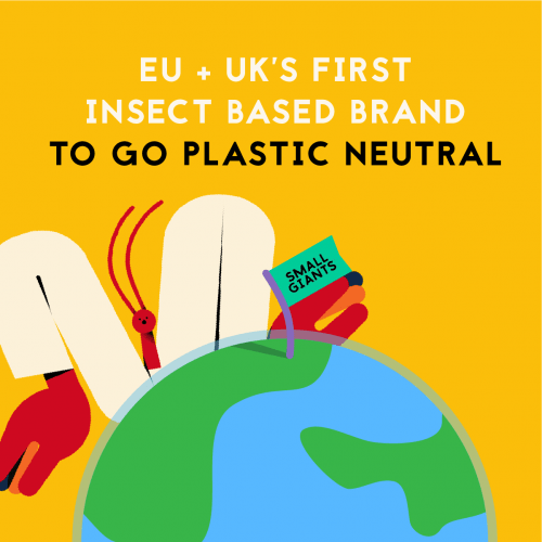 small giants is the first plastic-neautral company to sell edible insects