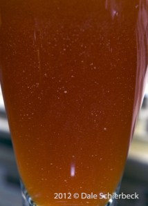 Hopkins Dbl IPA - particulate