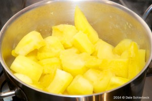 Boiled Squash for Low Phosphorus Dog Food