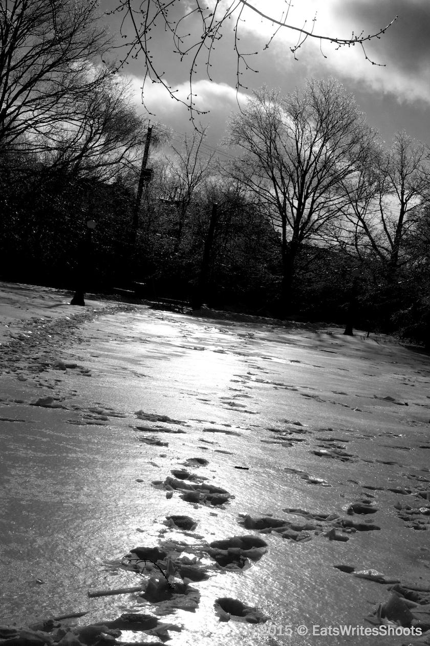 Frozen Footsteps
