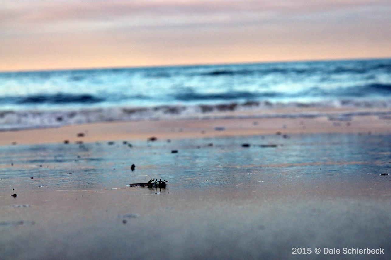 Monochrome Beach3