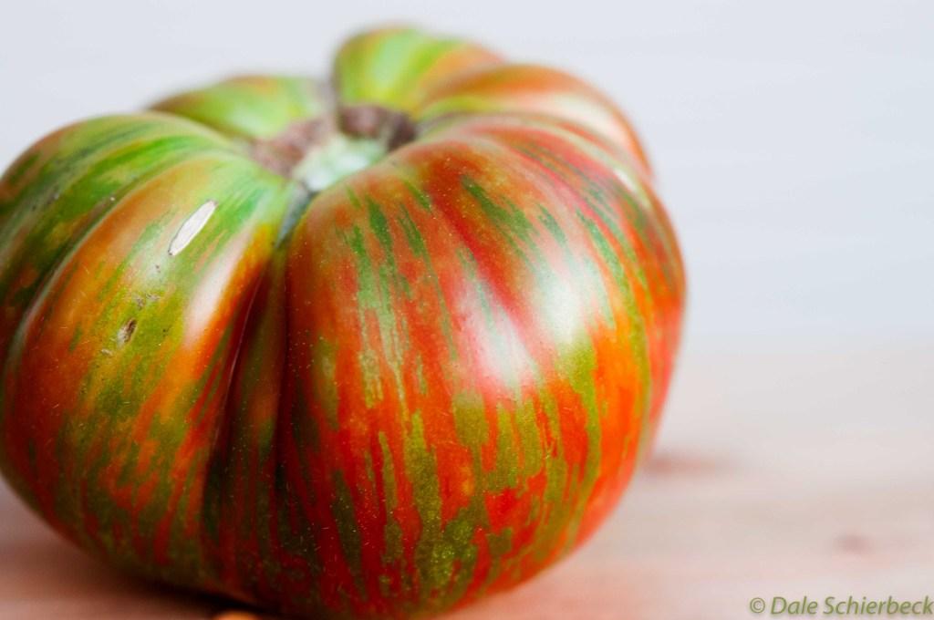 Coassack Tomato -4