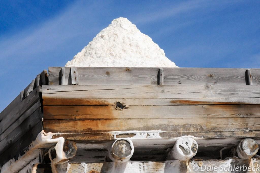 salt4