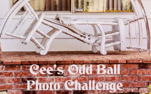 Submitted in Response to Cee's Odd Ball Photo Challenge: March 26, 2017