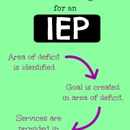 Special Education IEP Eligibility Criteria. Does the Label Matter?