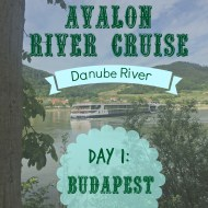 Day 1: Avalon Danube River Cruise