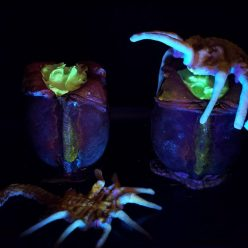 Halloween Recipe: Alien Facehugger Pudding Cups