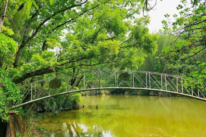 中興大學新化林場|臺灣唯一的低海拔亞熱帶林場,更是休閒度假的好去處。
