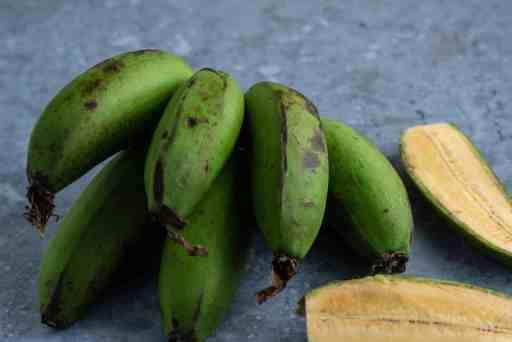 Green matoke   Green East African Highland banana
