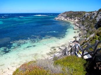 rottnest island, quokka, journée à rottnest island