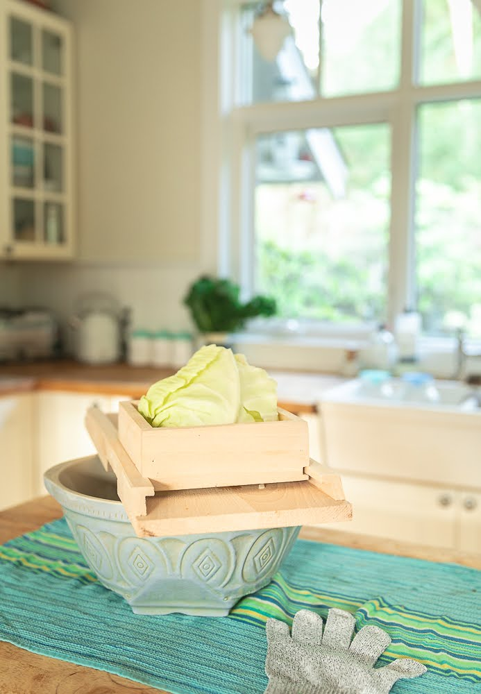 wooden cabbage shredder with cabbage