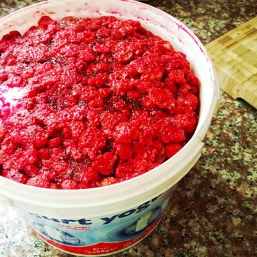 raspberry-1