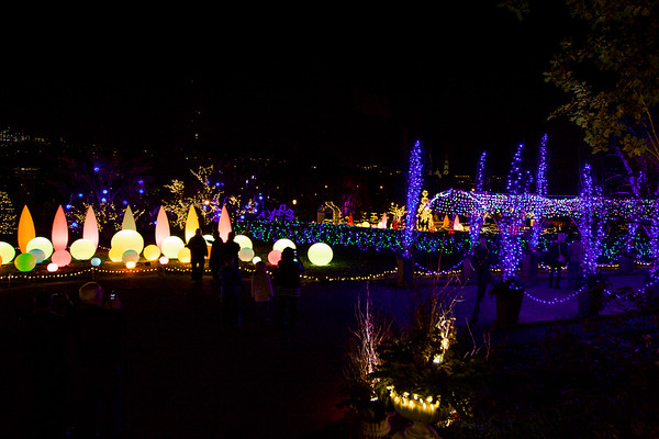 Phipps Conservatory Winter Flower Show and Light Garden - Pittsburgh, PA