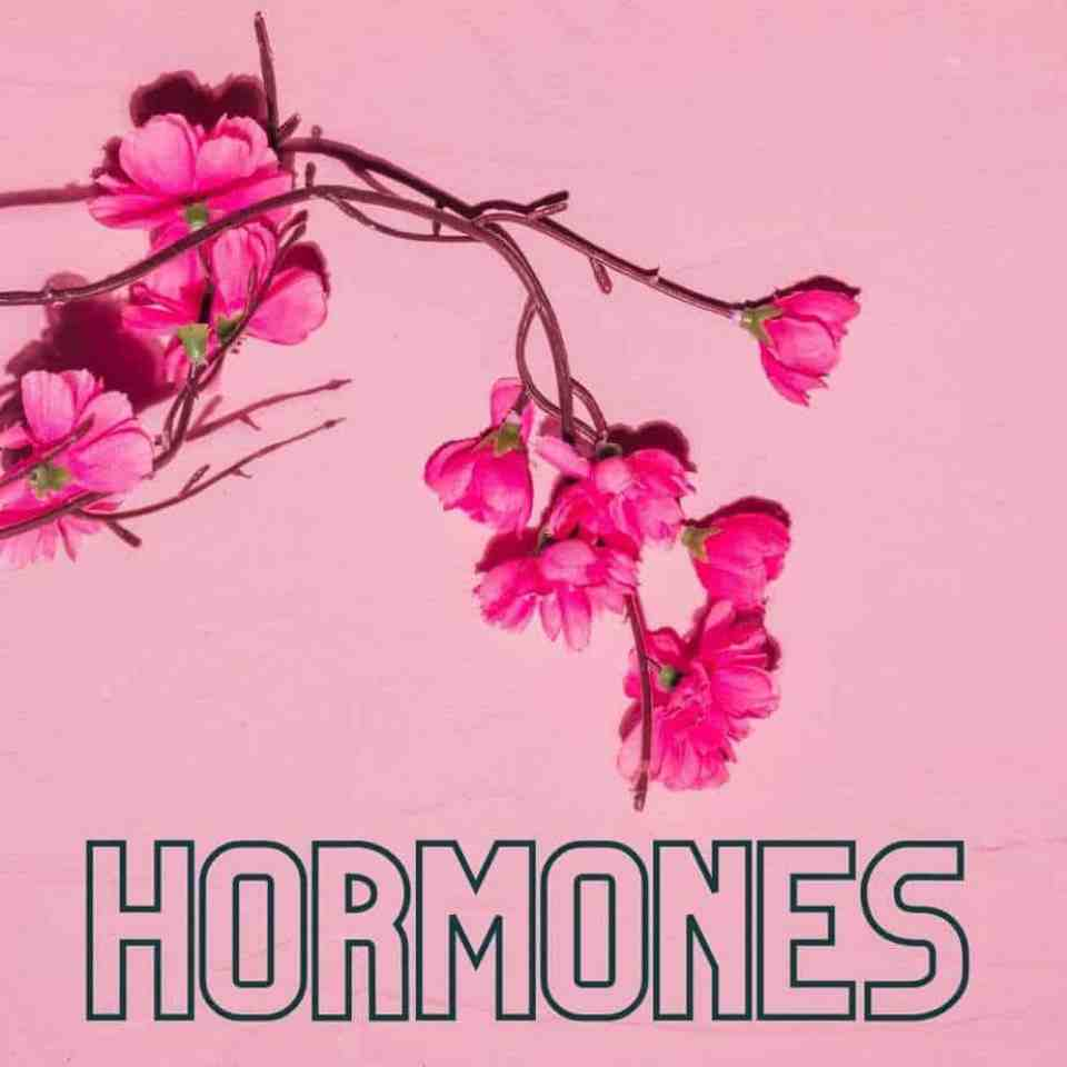5 Signs and Symptoms You May Have Female Hormone Imbalances. Hormone imbalance symptoms. Balancing hormones female. Can hormone imbalances cause weight gain? Signs female hormone imbalance.