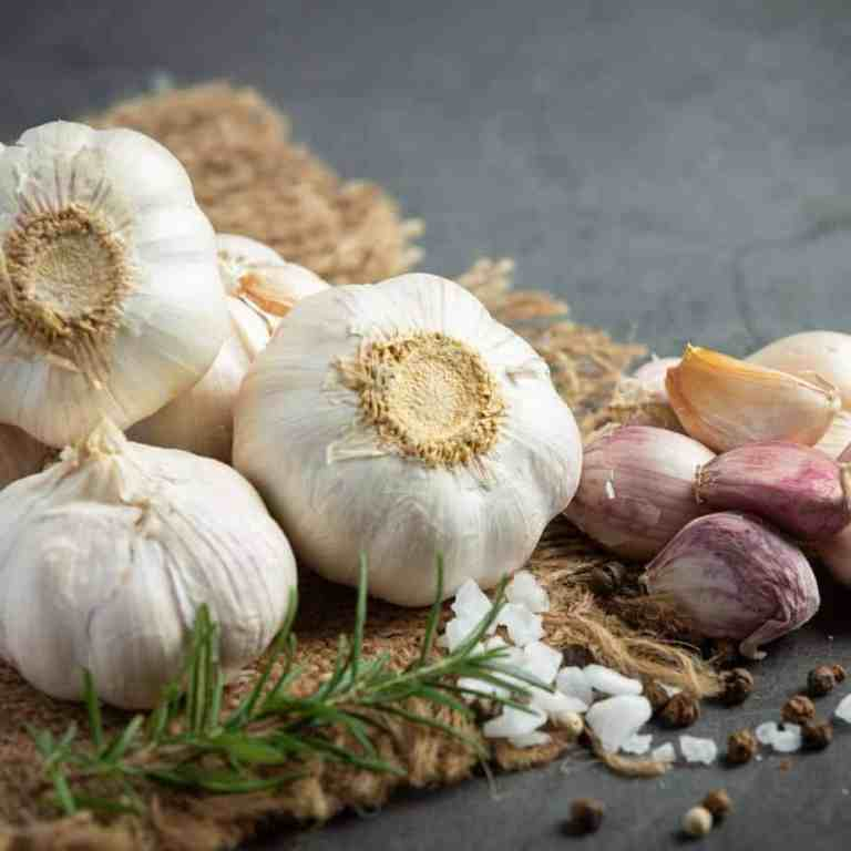 Is Garlic Good For You With Stopping a Cold Quickly?