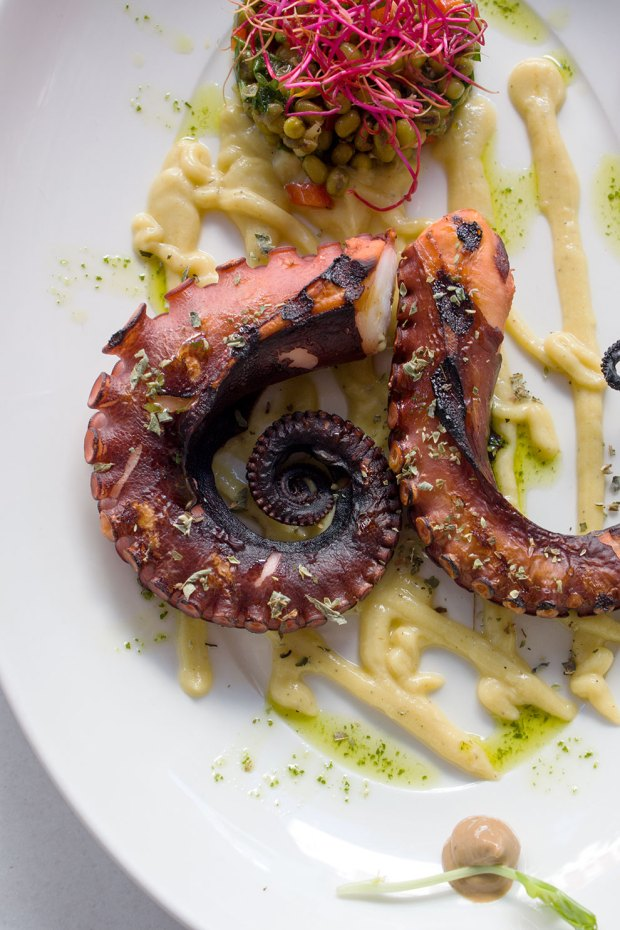 octopus, fava and mung beans Bakalo dishes @eatyourselfgreek