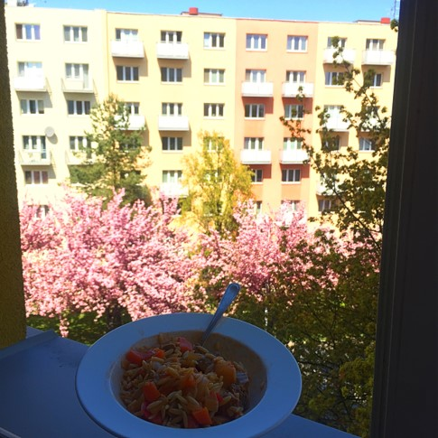 beef soup with orzo by dolmadaki.gr