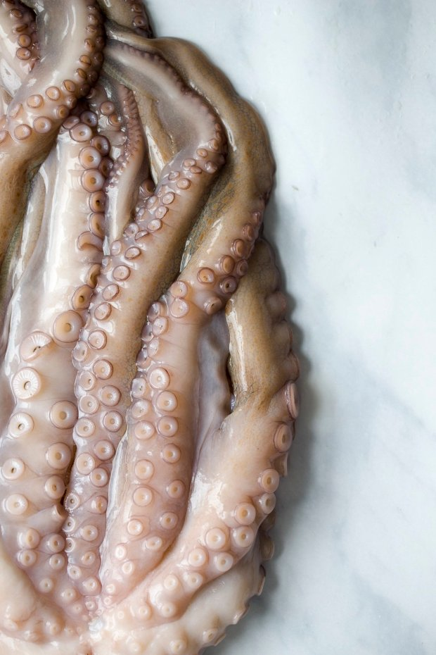 Baked octopus with shallots and Jersey royals