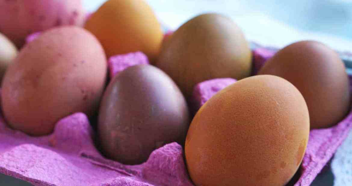 Multi colored Easter eggs in a pink egg carton