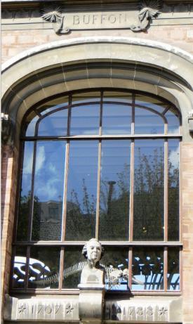 buffon-facade-museum