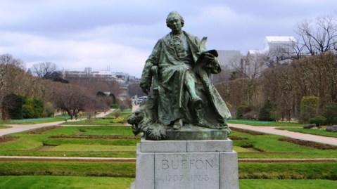 buffon-statue-jardin-des-plantes
