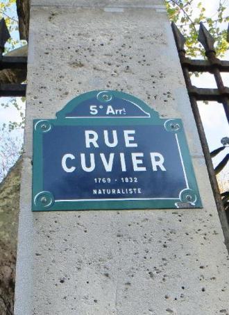 rue-cuvier-plaque