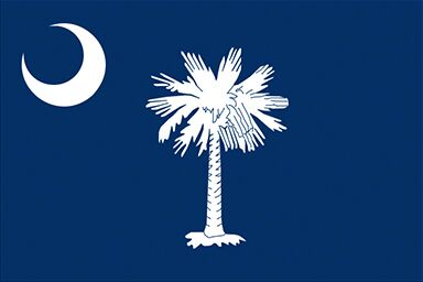 South Carolina state flag with a white crescent on the left and a white palmetto tree in the middle on blue background.