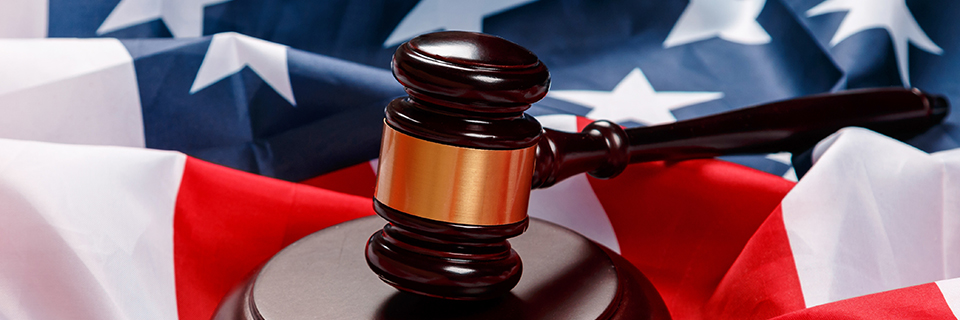 Federal-Courts-Ruling-Challenges-USCIS's-Treatment-of-Guaranteed-Redemptions