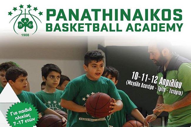 pao-academy-basket