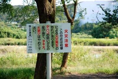 府中郷土の森 アクセス