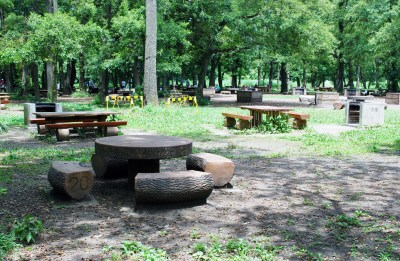 埼玉県 秋ヶ瀬公園