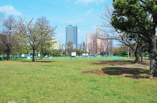辰巳の森海浜公園 BBQレンタル1