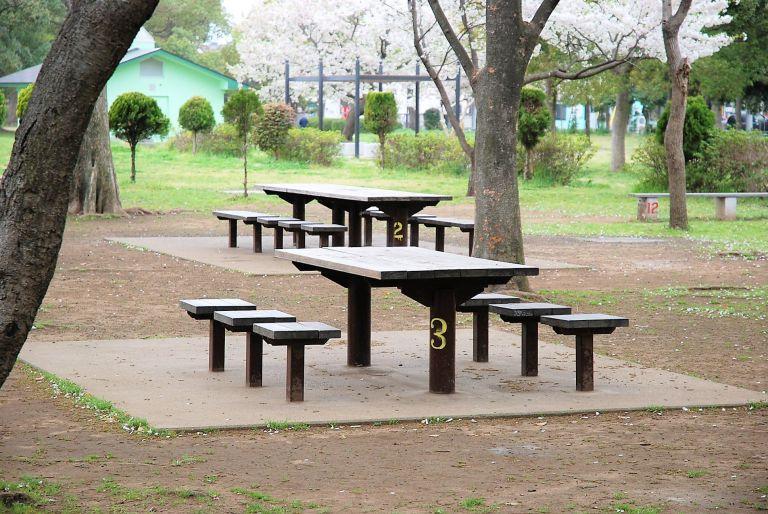 篠崎公園BBQ 東京
