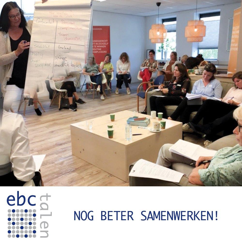 Disc workshop voor betere samenwerking