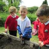 Gardening (3)